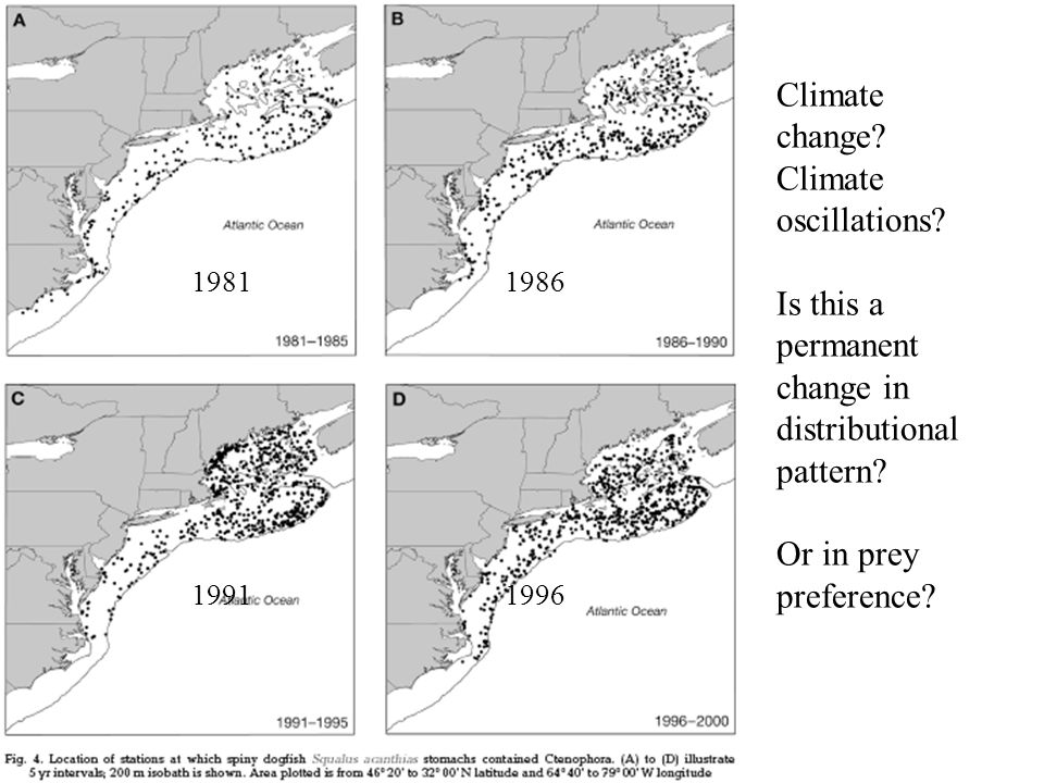 1981 1986 1991 1996. Climate change. Climate oscillations.