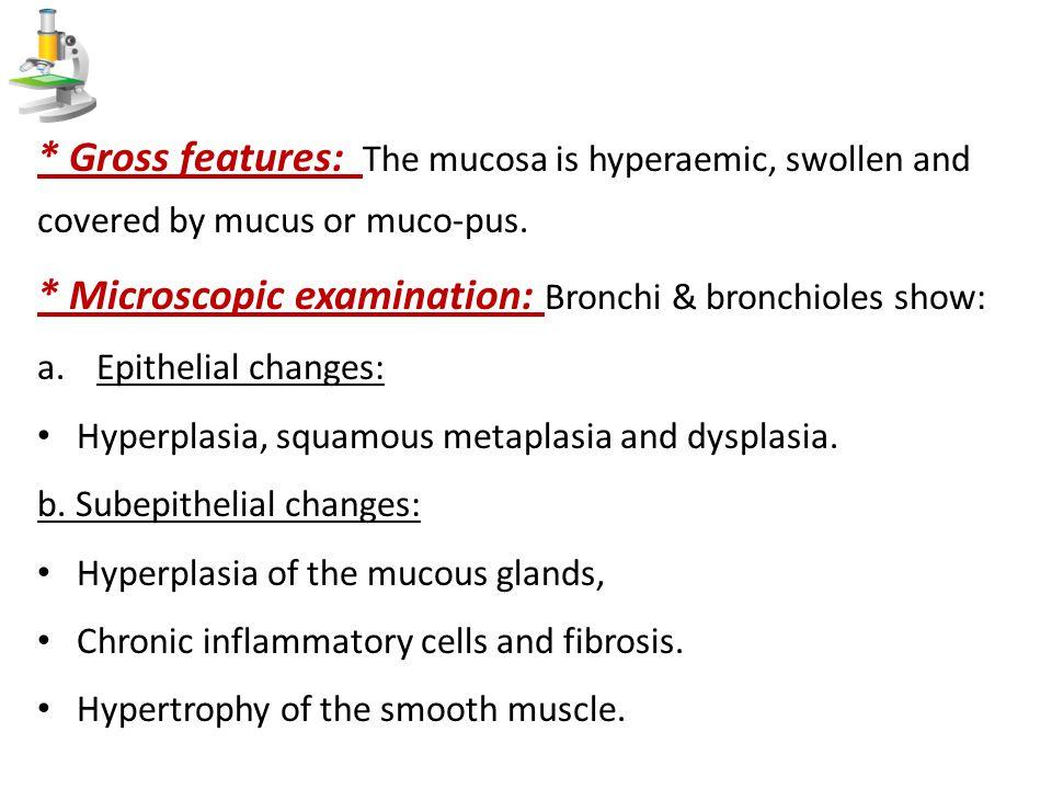 * Microscopic examination: Bronchi & bronchioles show: