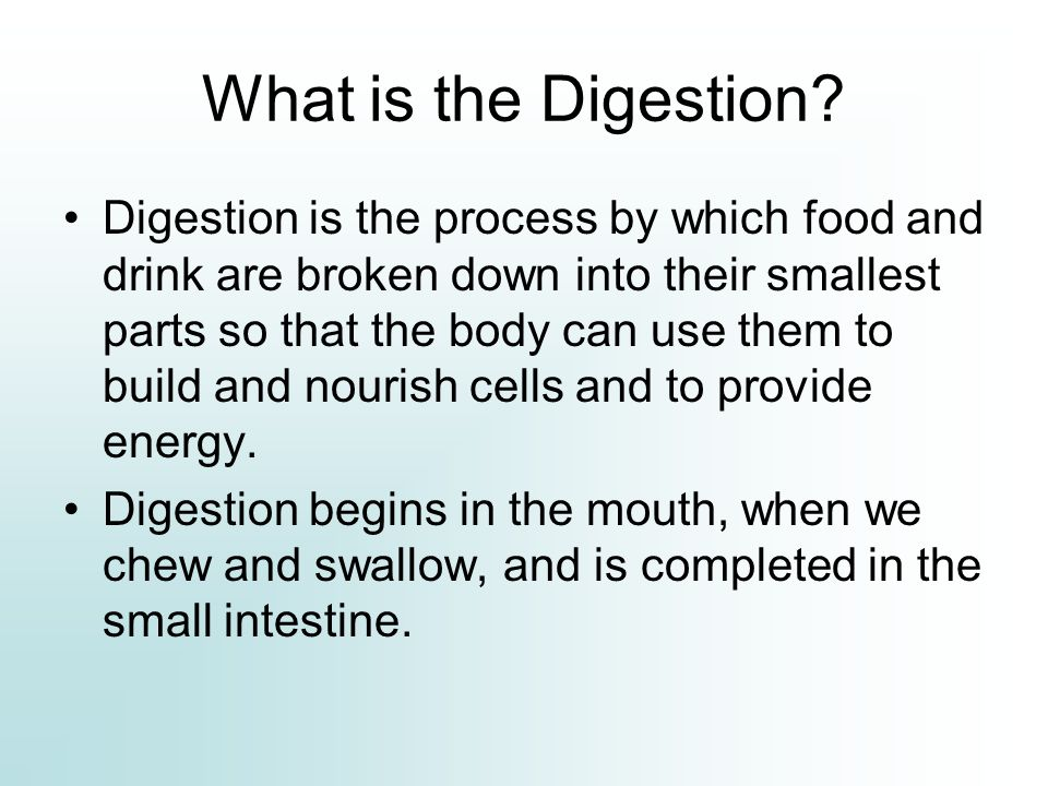 What is the Digestion