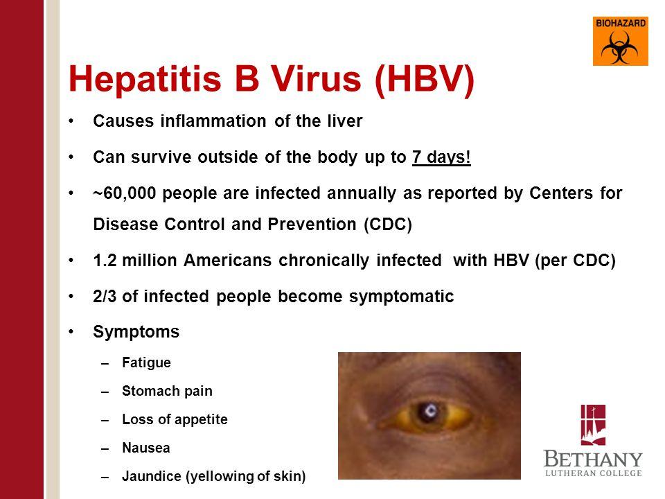 Hepatitis B Virus (HBV)