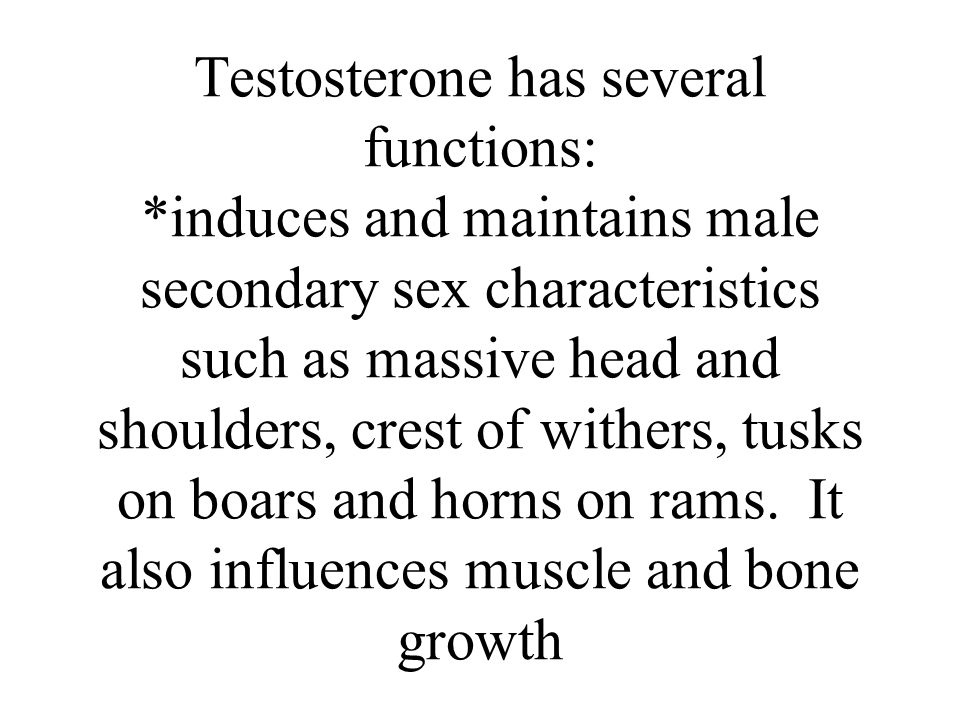 Testosterone has several functions: