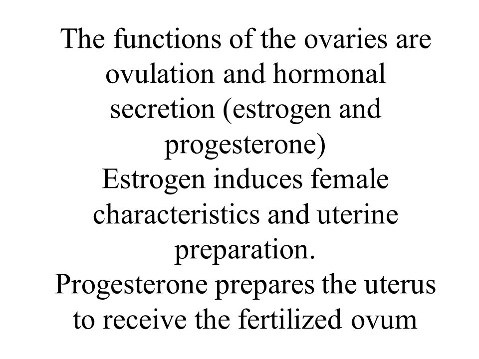 The functions of the ovaries are ovulation and hormonal secretion (estrogen and progesterone) Estrogen induces female characteristics and uterine preparation.