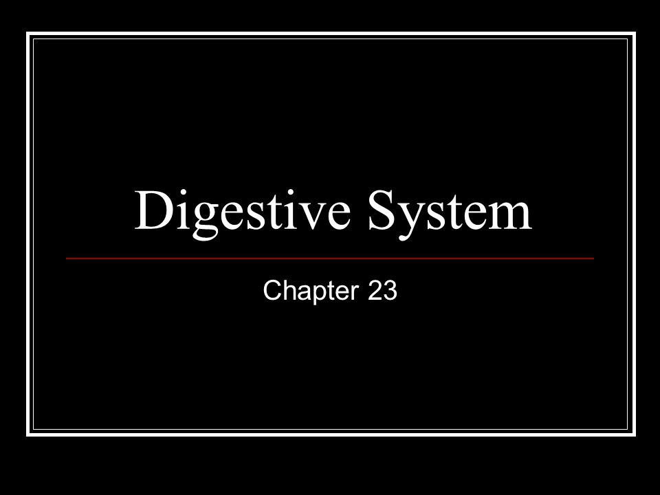 Digestive System Chapter 23