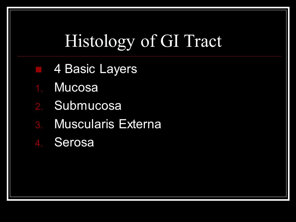 Histology of GI Tract 4 Basic Layers Mucosa Submucosa