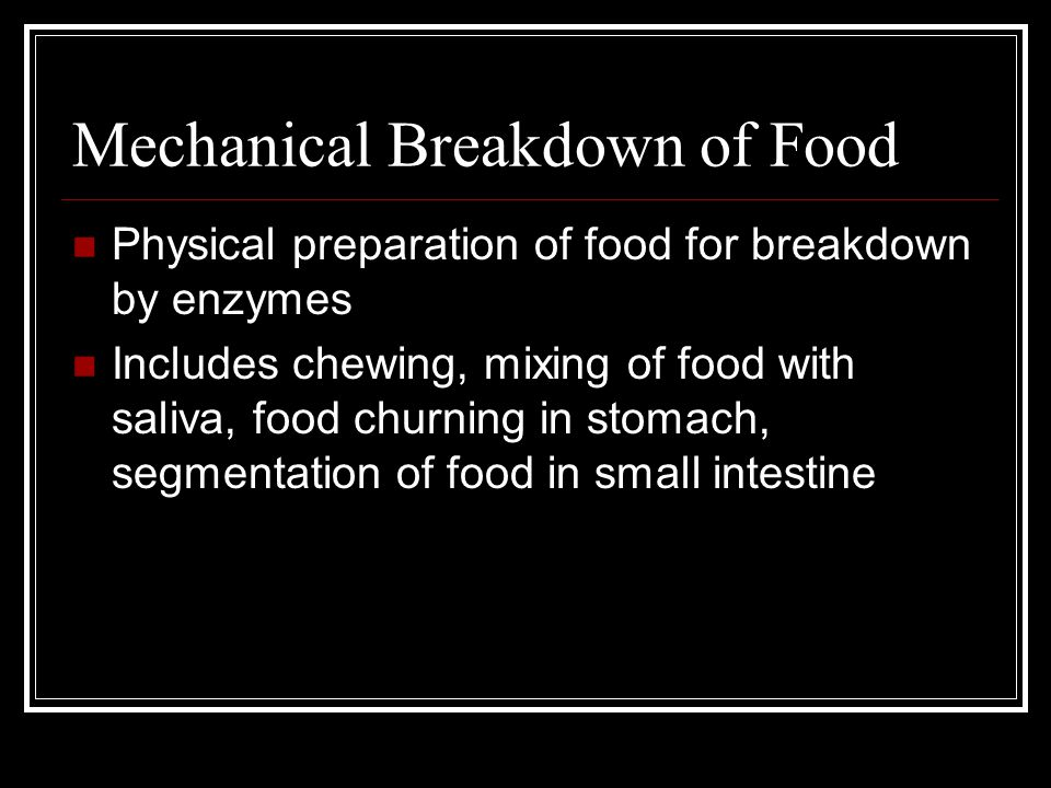 Mechanical Breakdown of Food