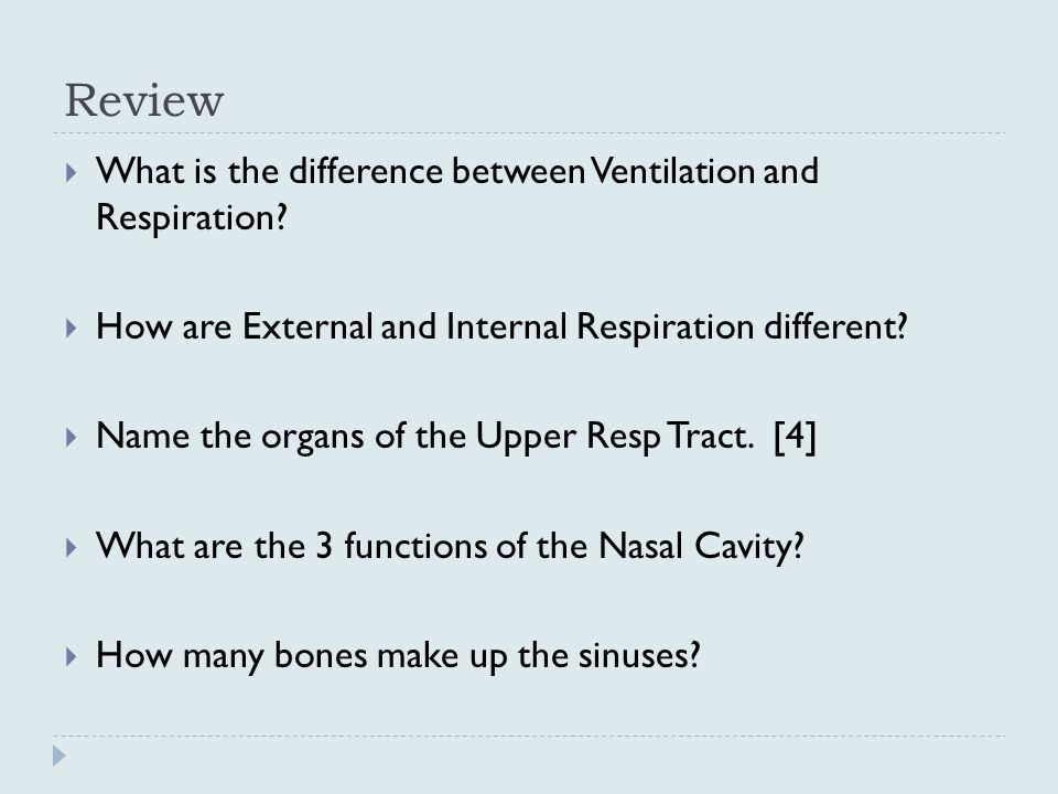 Review What is the difference between Ventilation and Respiration