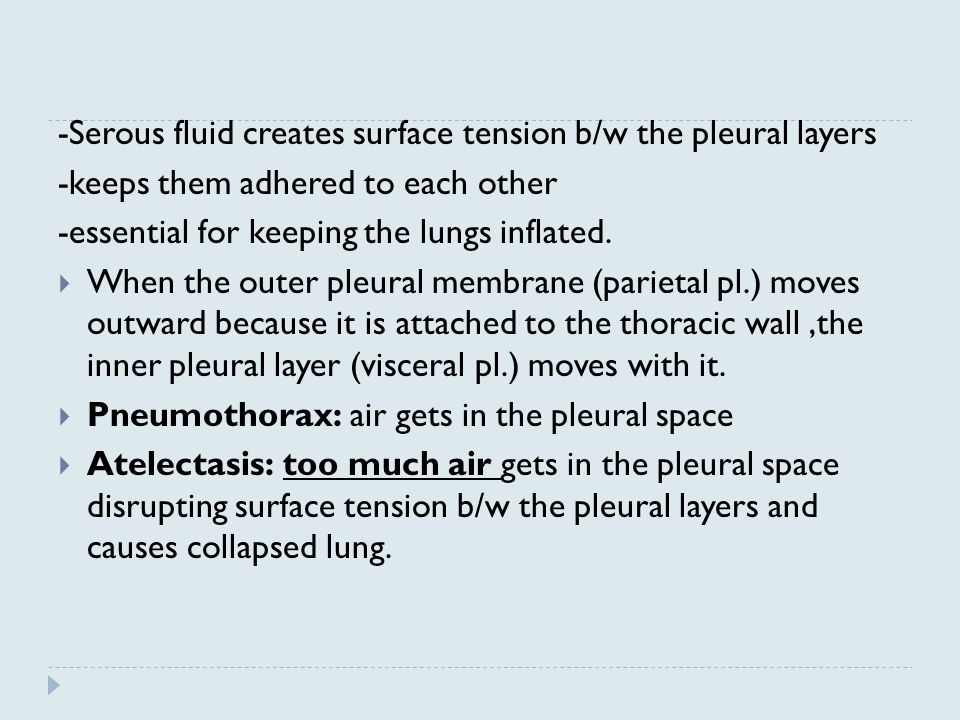 -Serous fluid creates surface tension b/w the pleural layers. -keeps them adhered to each other.