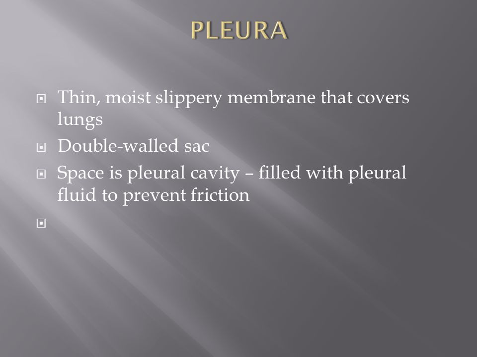PLEURA Thin, moist slippery membrane that covers lungs