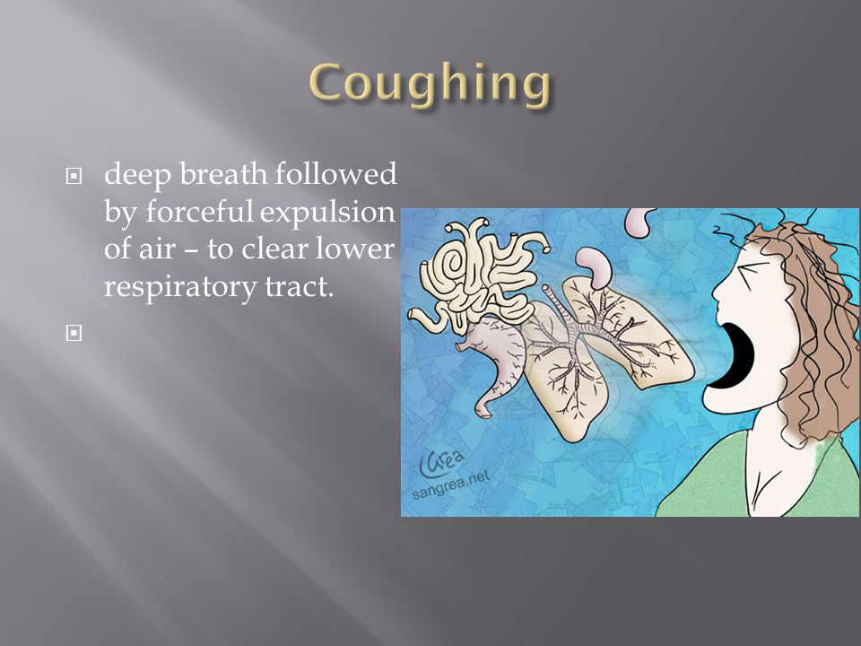 Coughing deep breath followed by forceful expulsion of air – to clear lower respiratory tract.