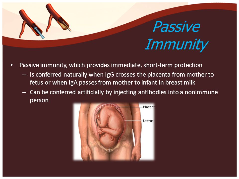 Passive Immunity Passive immunity, which provides immediate, short-term protection.