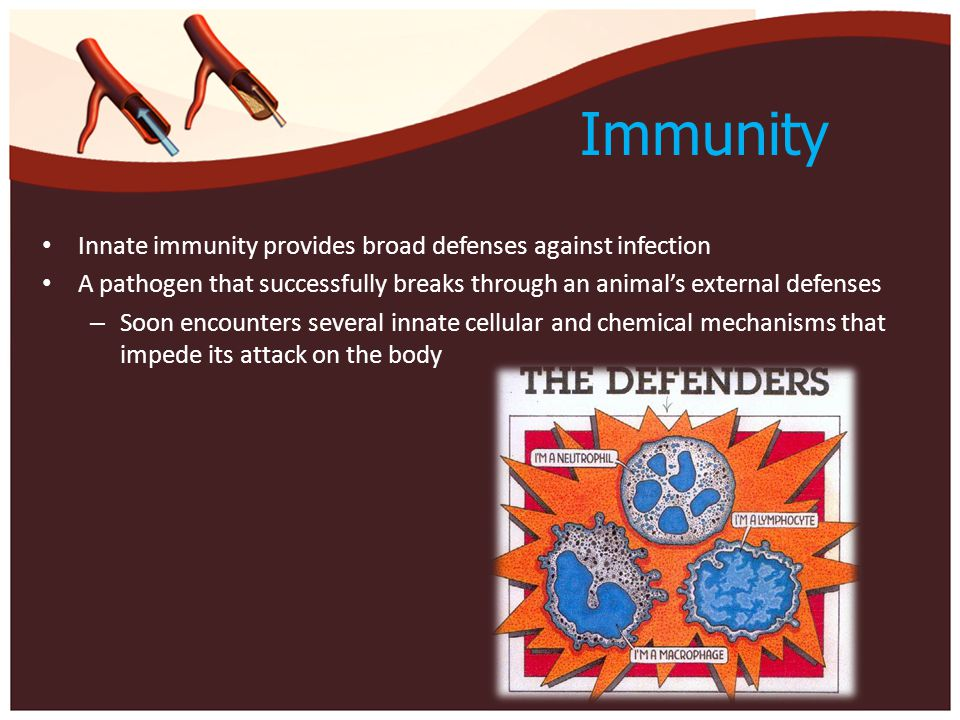 Immunity Innate immunity provides broad defenses against infection