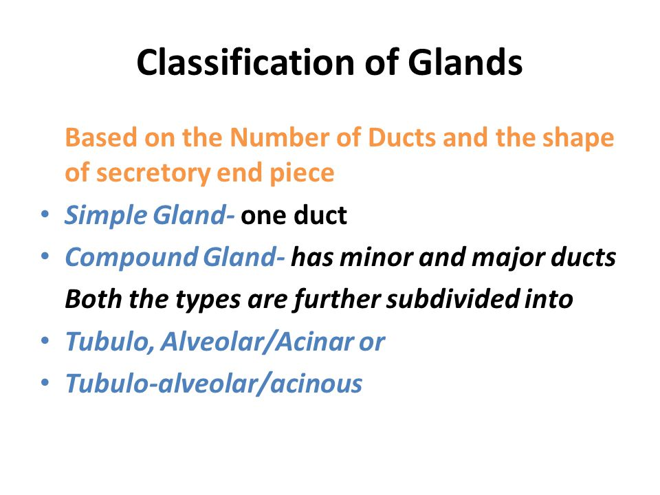 Classification of Glands
