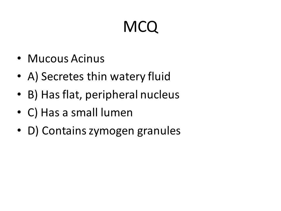 MCQ Mucous Acinus A) Secretes thin watery fluid