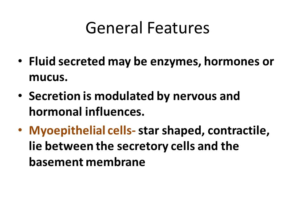General Features Fluid secreted may be enzymes, hormones or mucus.