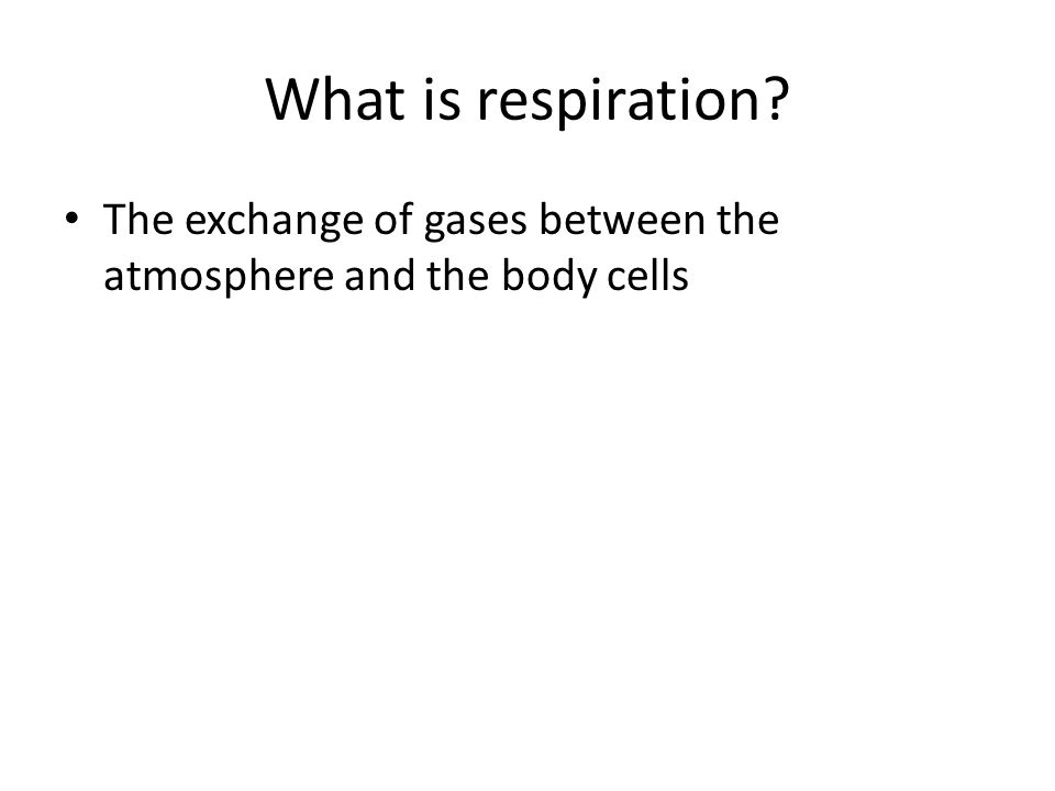 What is respiration The exchange of gases between the atmosphere and the body cells