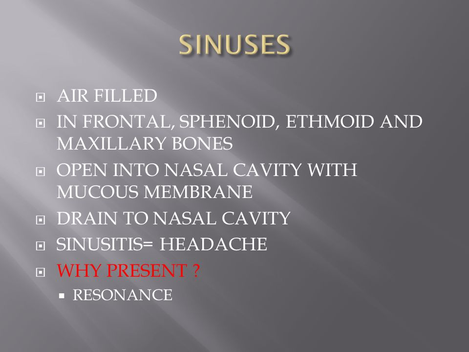 SINUSES AIR FILLED IN FRONTAL, SPHENOID, ETHMOID AND MAXILLARY BONES