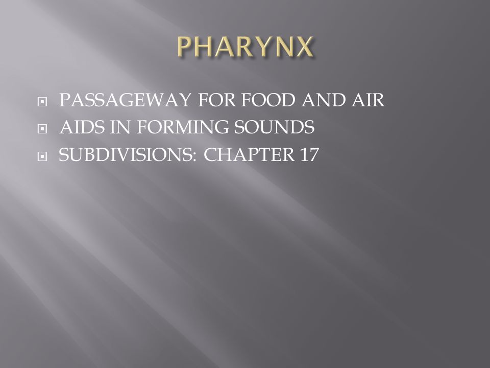 PHARYNX PASSAGEWAY FOR FOOD AND AIR AIDS IN FORMING SOUNDS