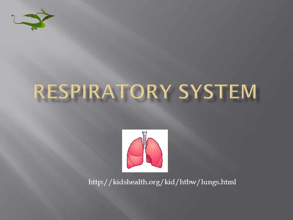 RESPIRATORY SYSTEM http://kidshealth.org/kid/htbw/lungs.html