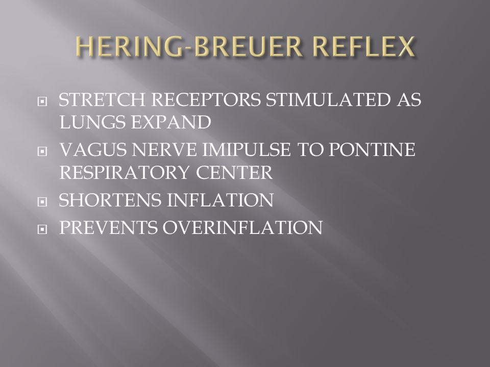 HERING-BREUER REFLEX STRETCH RECEPTORS STIMULATED AS LUNGS EXPAND