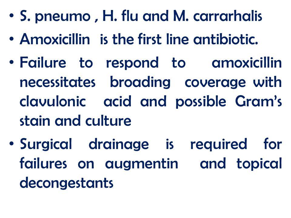 S. pneumo , H. flu and M. carrarhalis