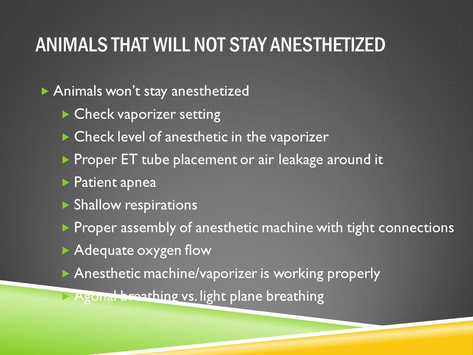 ANIMALS THAT WILL NOT STAY ANESTHETIZED