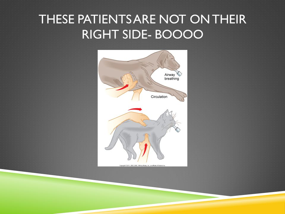 These patients are not on their right side- boooo