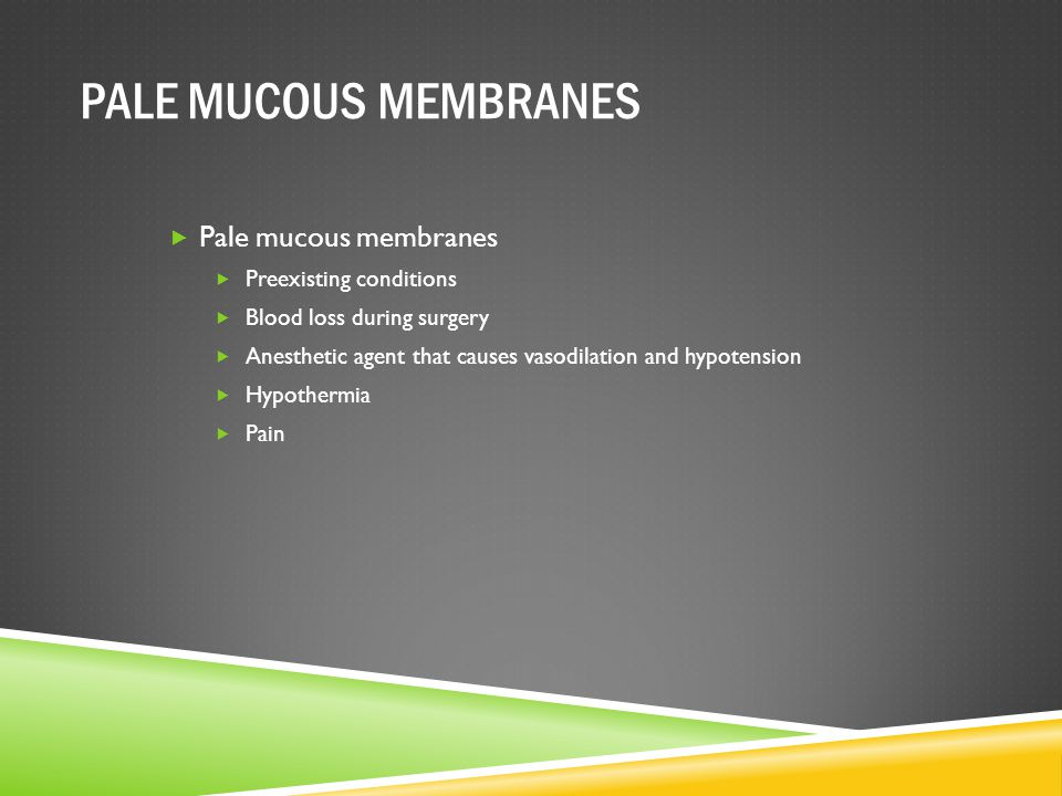 PALE MUCOUS MEMBRANES Pale mucous membranes Preexisting conditions