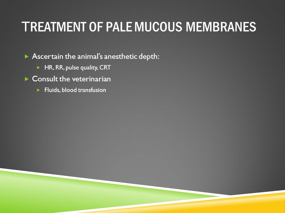 TREATMENT OF PALE MUCOUS MEMBRANES