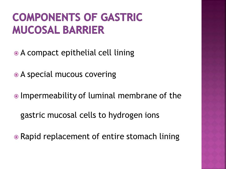 Components Of Gastric Mucosal Barrier