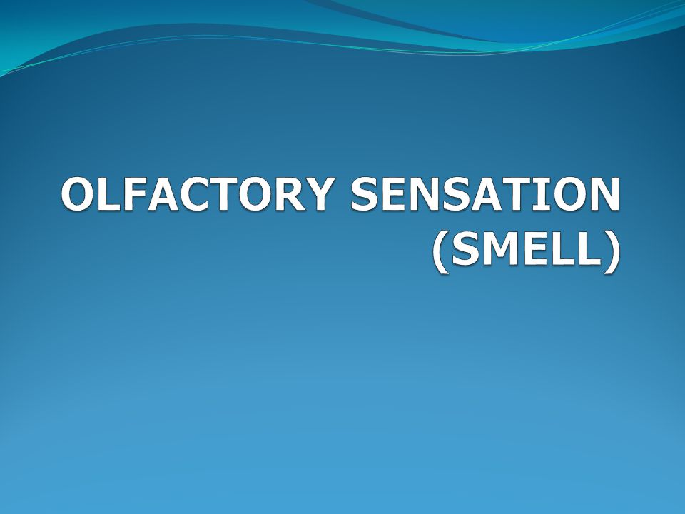 OLFACTORY SENSATION (SMELL)