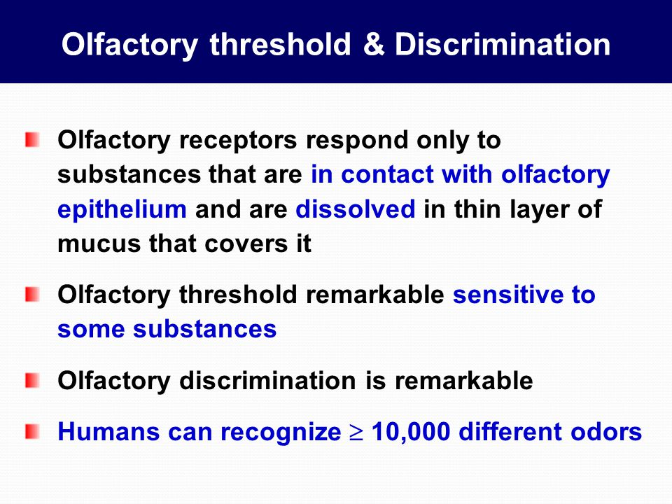 Olfactory threshold & Discrimination