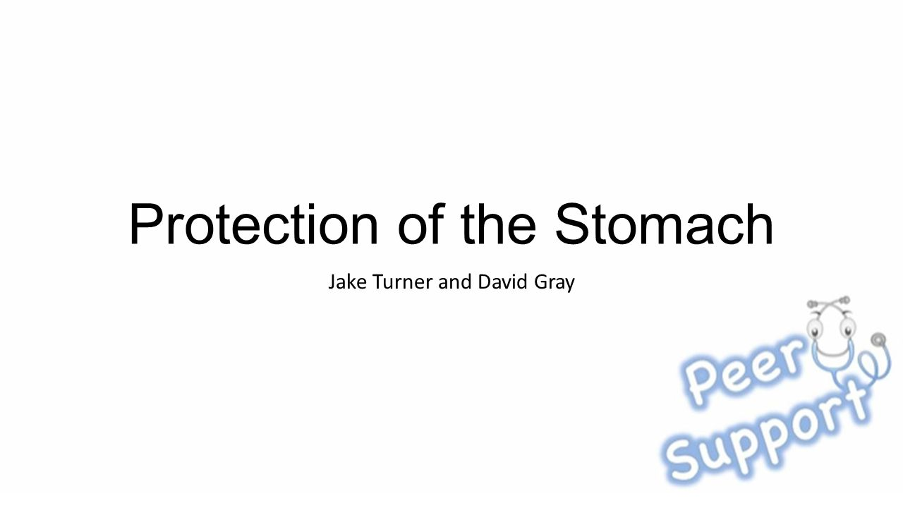 Protection of the Stomach