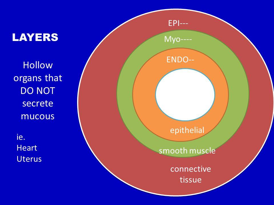 Hollow organs that DO NOT secrete mucous