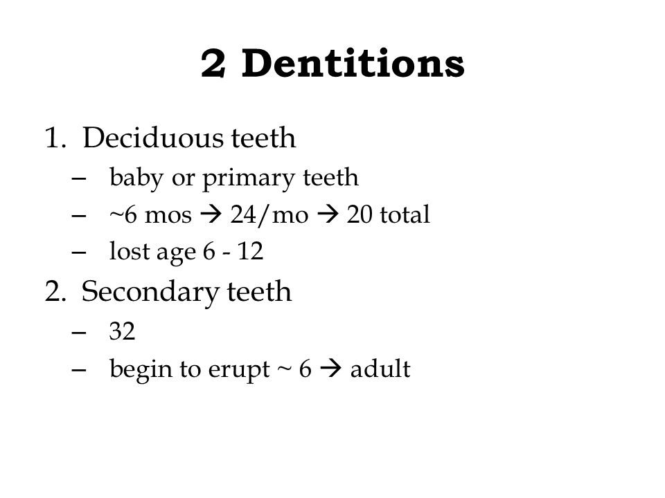 2 Dentitions Deciduous teeth Secondary teeth baby or primary teeth