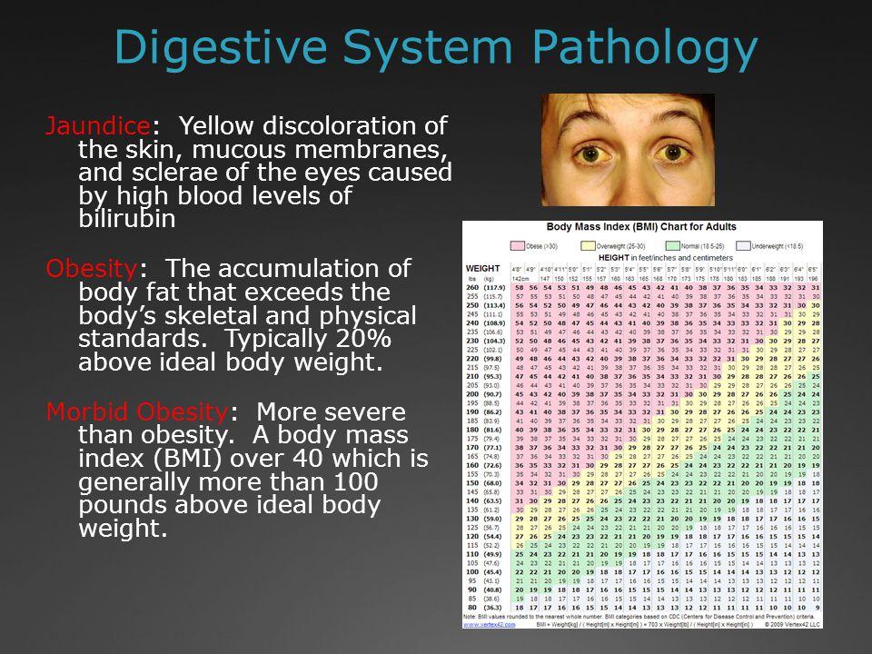 Digestive System Pathology