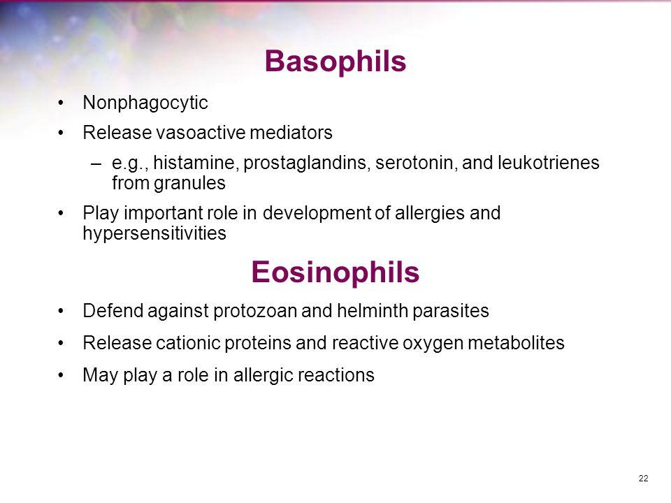 Basophils Eosinophils Nonphagocytic Release vasoactive mediators