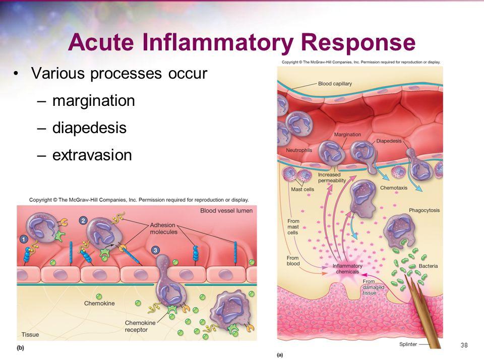 Acute Inflammatory Response