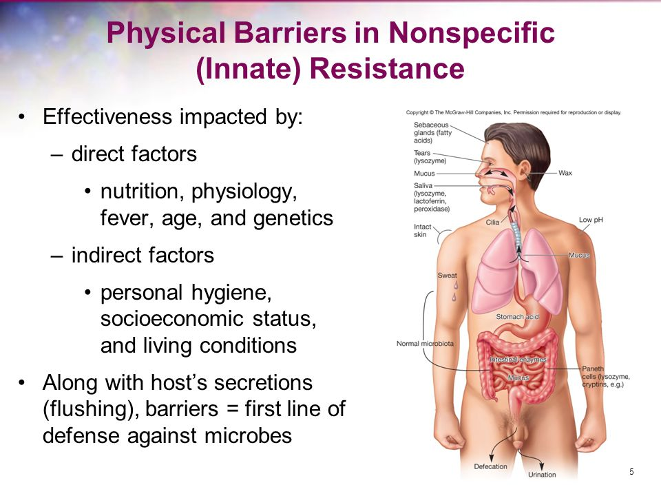 Physical Barriers in Nonspecific (Innate) Resistance