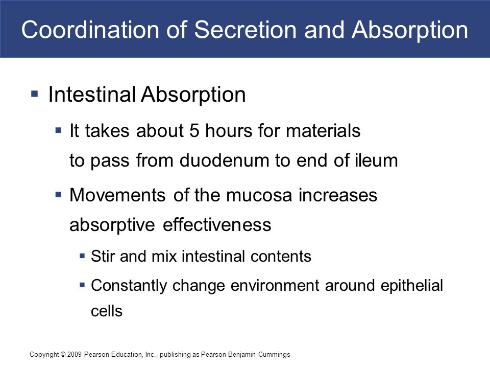 Coordination of Secretion and Absorption