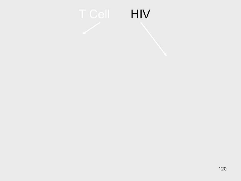 T Cell HIV