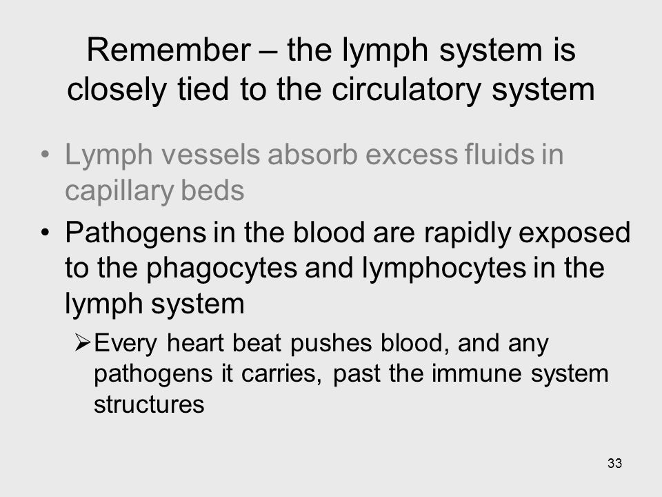 Remember – the lymph system is closely tied to the circulatory system