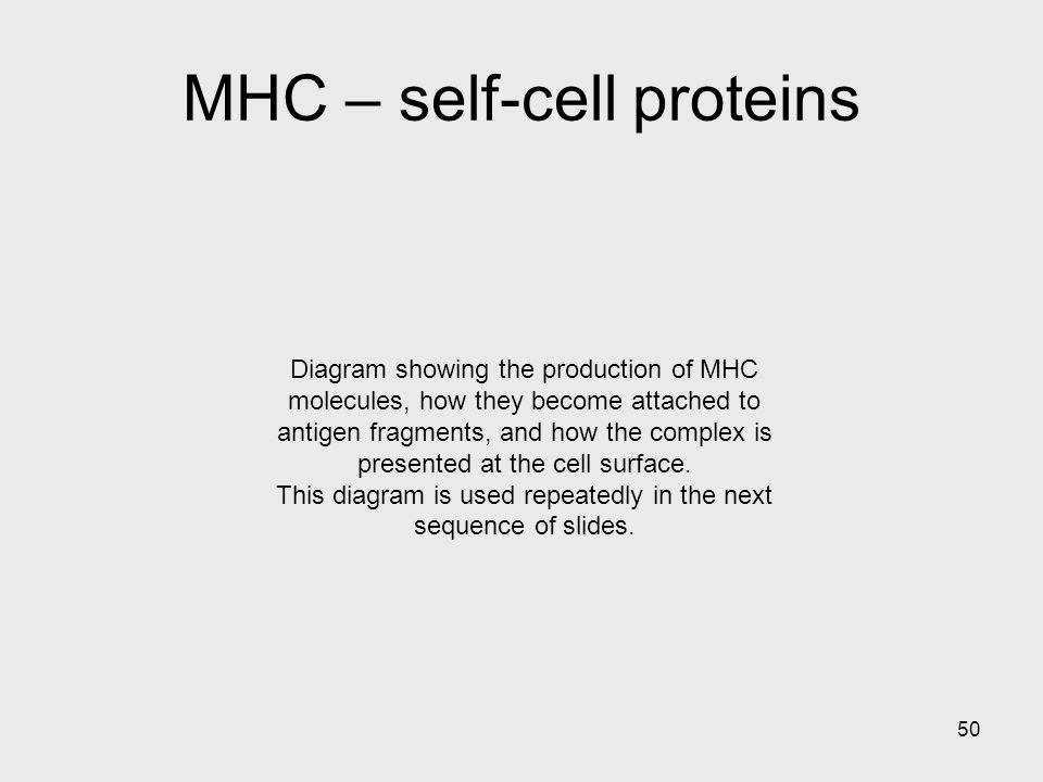 MHC – self-cell proteins