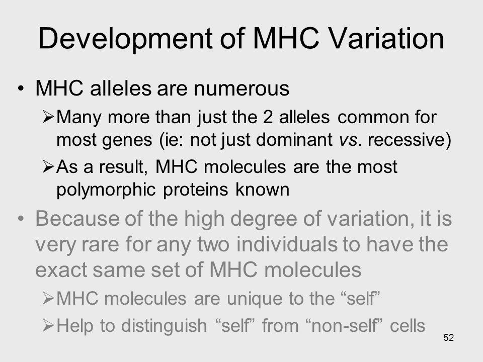 Development of MHC Variation