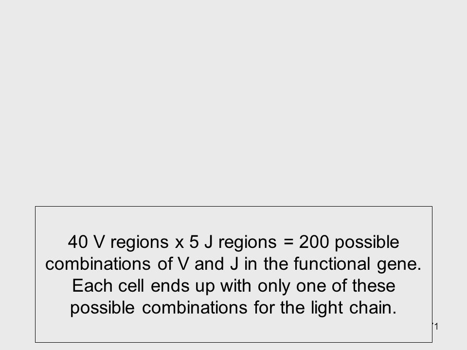 40 V regions x 5 J regions = 200 possible combinations of V and J in the functional gene. Each cell ends up with only one of these possible combinations for the light chain.