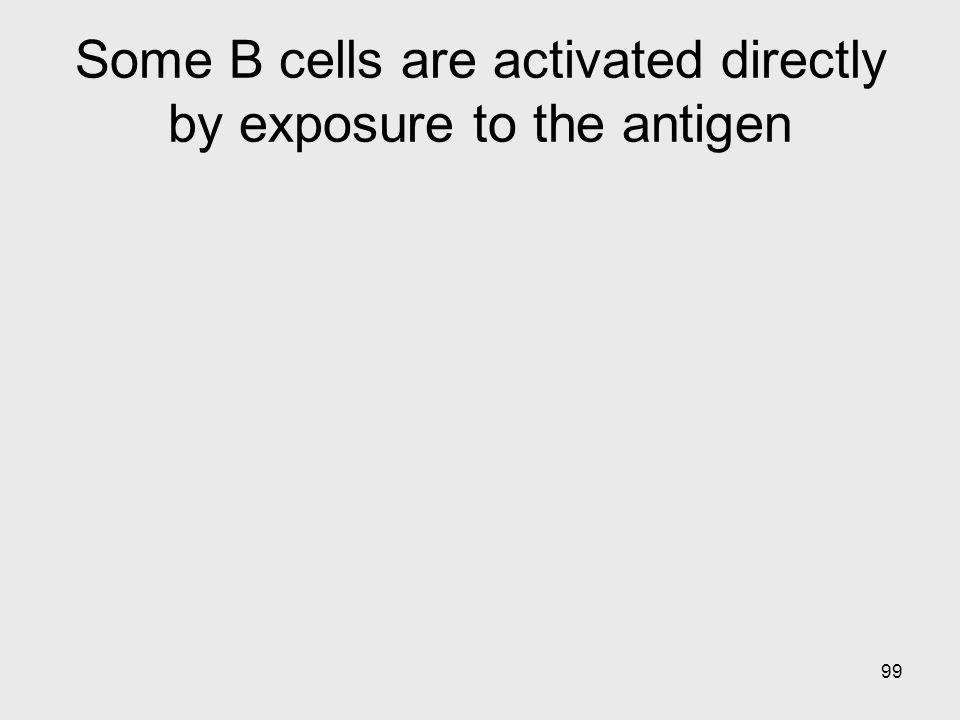 Some B cells are activated directly by exposure to the antigen