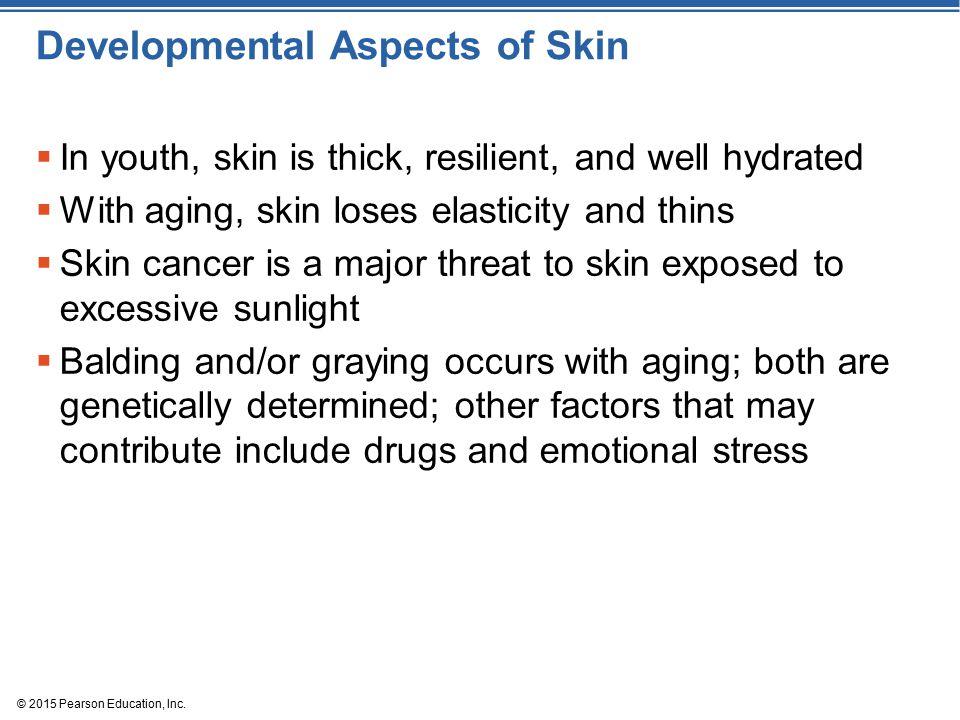 Developmental Aspects of Skin
