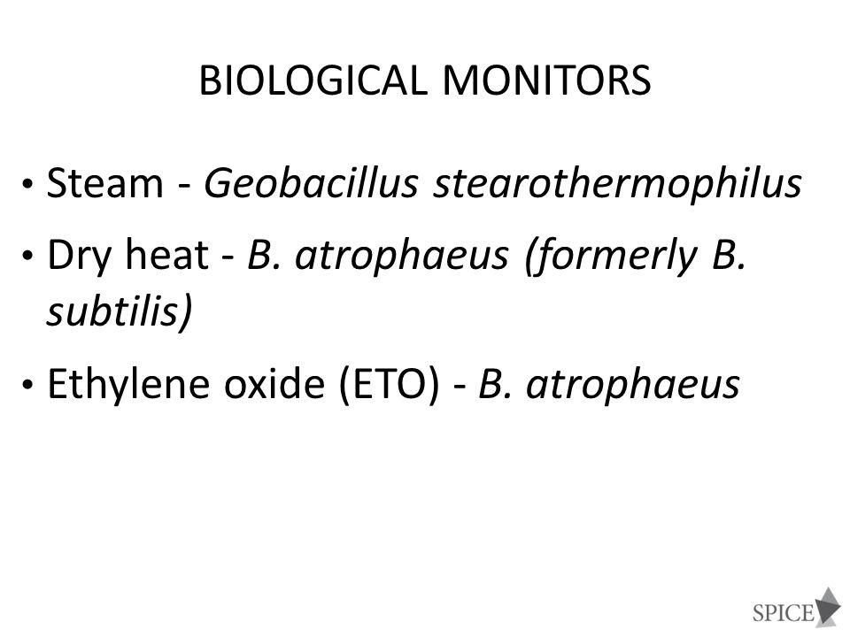 Steam - Geobacillus stearothermophilus