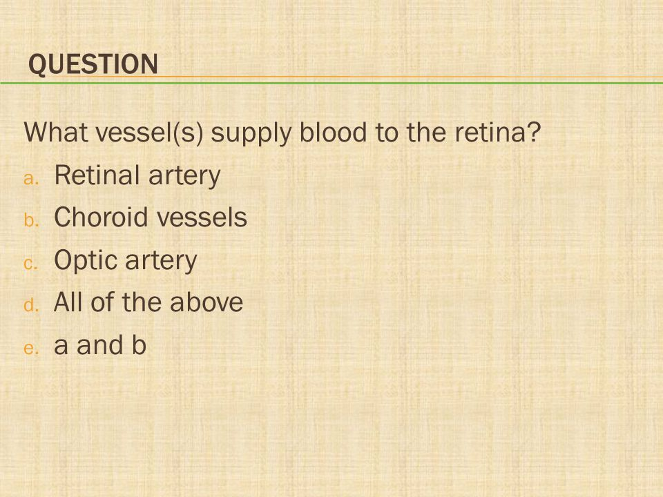 Question What vessel(s) supply blood to the retina Retinal artery. Choroid vessels. Optic artery.
