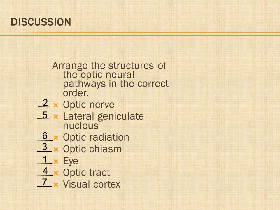 Discussion Arrange the structures of the optic neural pathways in the correct order. Optic nerve. Lateral geniculate nucleus.