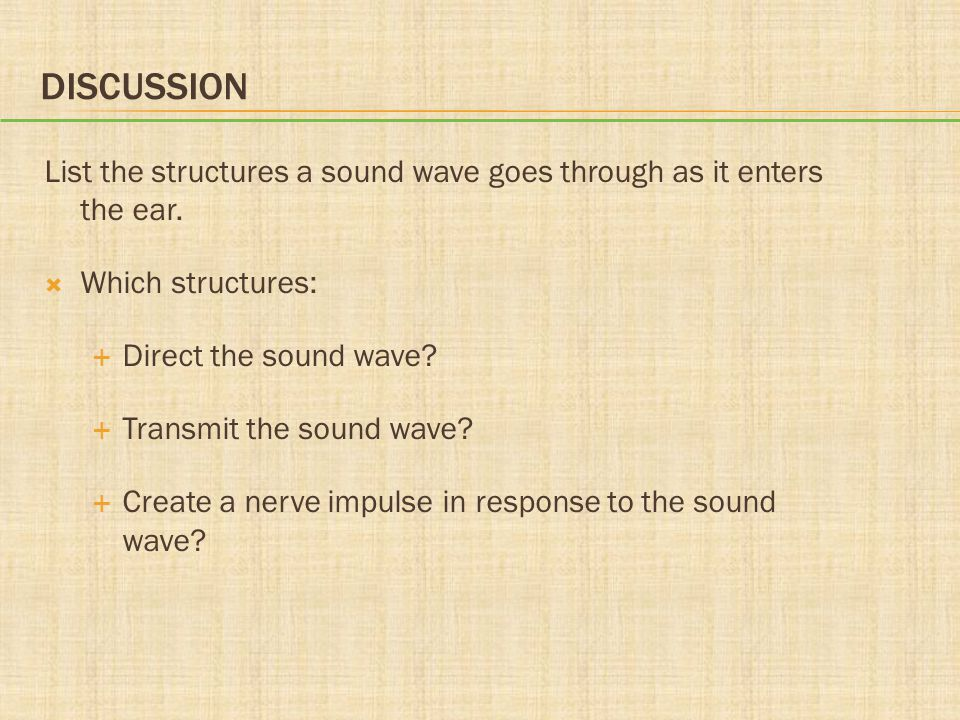 Discussion List the structures a sound wave goes through as it enters the ear. Which structures: Direct the sound wave